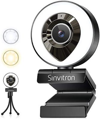 Sinvitron Webcam