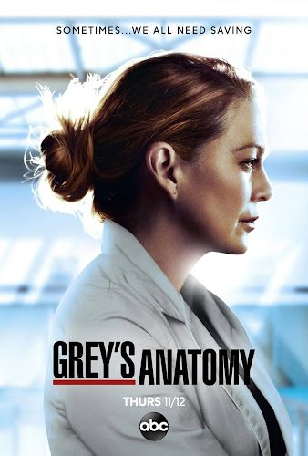 Grey's Anatomy Temporada 17 (HDTV 720p Ingles Subtitulado)