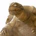 Gamera, o Bravo um inocente e divertido filme de monstros gigantes