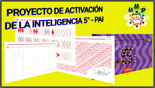 PROYECTO DE ACTIVACIÓN DE LA INTELIGENCIA 5-PAI