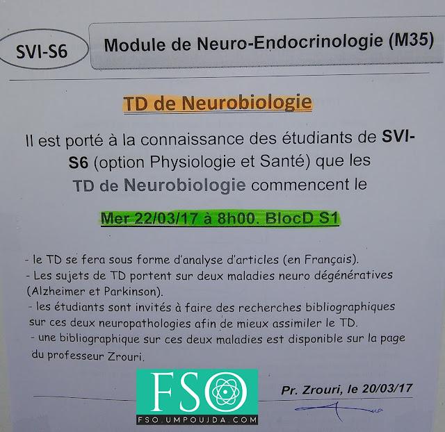 "SVI S6 - PS : TD de ""Neurobiologie"""