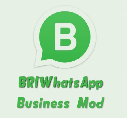 Briwhatsapp Business V0 10 Latest Version Download Now