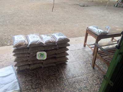 Benih padi yang dibeli   ZENZEN Purwakarta, Jabar.   (Sebelum packing karung).