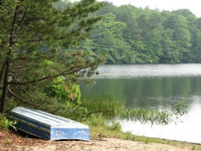 Cliff Pond Brewster
