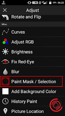 2. Selanjutnya pilih Paint Mask / Selection