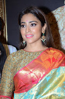 Shriya Saran Looks Stunning in Silk Saree at VRK Silk Showroom Launch Secundrabad ~  Exclusive 070.JPG