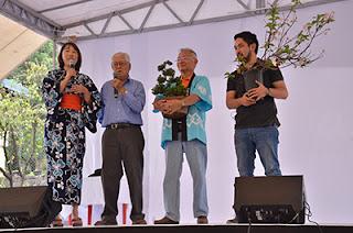 Muestra de Bonsai en Haru Matsuri 2018