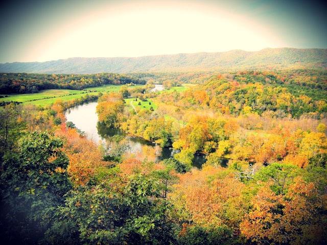 Blue Ridge Foothills Amp Lakes Virginia Master Naturalists