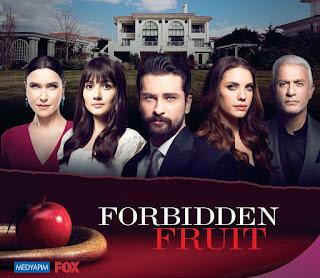 forbidden fruit turkish drama cast