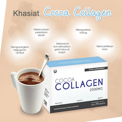 cocoa collagen sendayu tinggi
