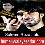 https://humaliwalaazadar.blogspot.com/2019/09/saleem-raza-jatoi-nohay-2020.html