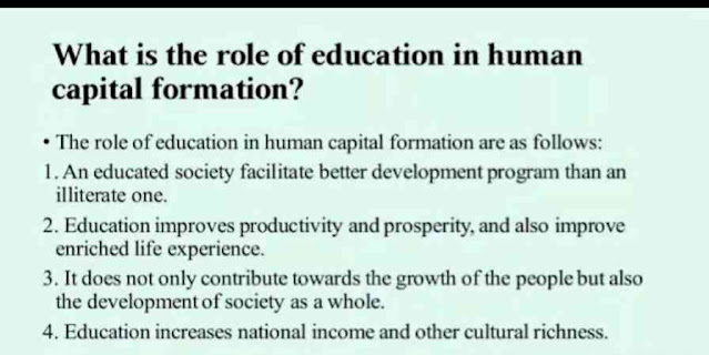 What is the Role of Education in Human Capital Formation?