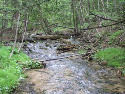 Jordan River, Michigan