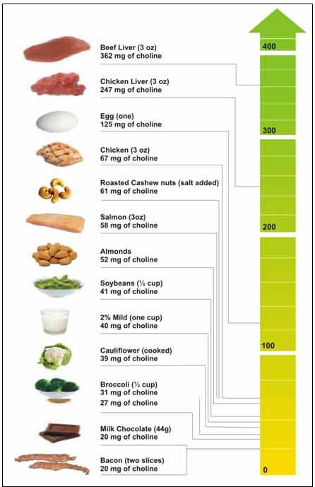 Choline Food Sources List