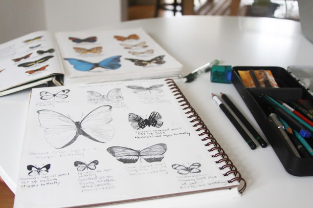 butterflies, sketchbooks, Anne Butera, My Giant Strawberry
