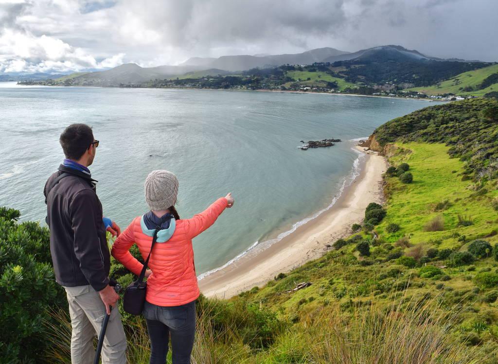 Hokianga Harbor: Travel New Zealand and Discover the Kiwi Land