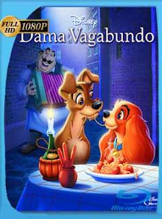 La Dama Y El Vagabundo (1955) HD [1080p] Latino [GoogleDrive] dizonHD