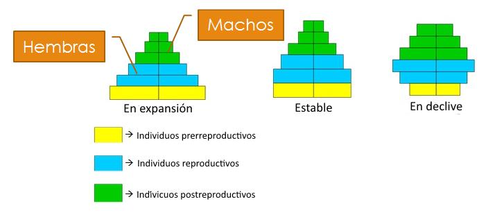B Log Ia 2 0 Estructura Y Dinámica De Los Ecosistemas