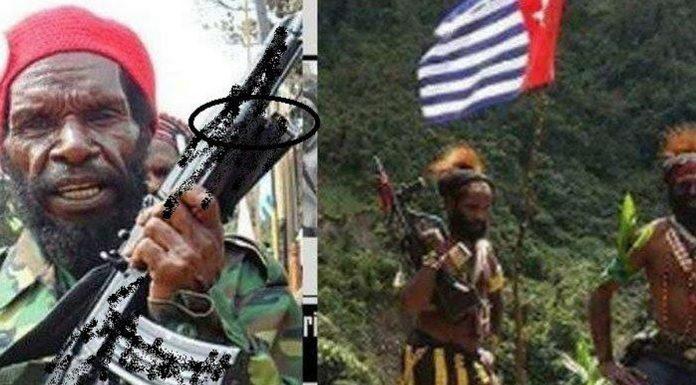 Sebut Jokowi Pembunuh, Pimpinan KKB: Anda Jangan Macam-macam, Kami Siap Merdeka!