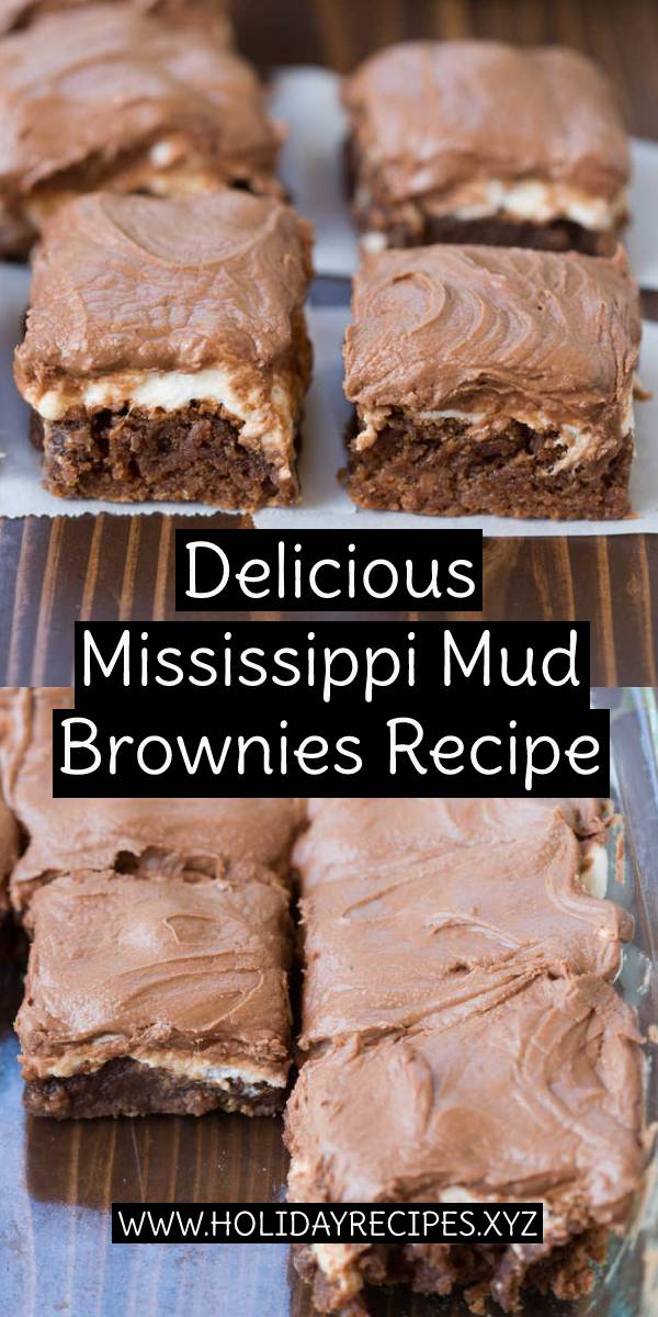 Delicious Mississippi Mud Brownies Recipe - This is my favorite one-bowl brownie recipe that topped with warm gooey marshmallows and chocolate frosting. Super moist & delicious! #delicious #mississippi #mud #brownies #dessert #browniesrecipe #dessertrecipe #moist #marshmallows #favoriterecipe #bestbrownies #bestrecipe #recipeoftheday