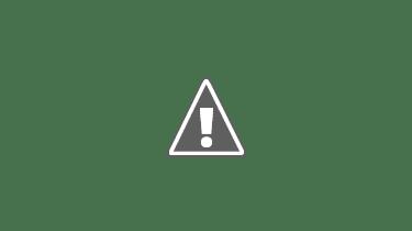 Kabir Singh Full Movie Free Download in 720p/Hd