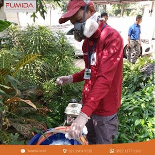 3 Keuntungan Menggunakan Jasa Pembasmi Rayap Yogyakarta
