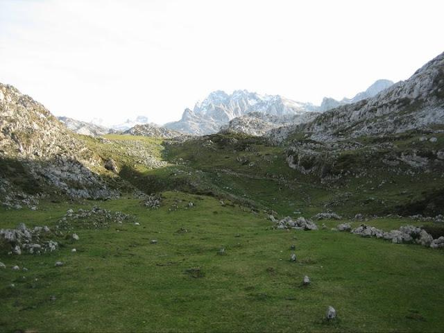 Las piedras del suelo marcan el camino