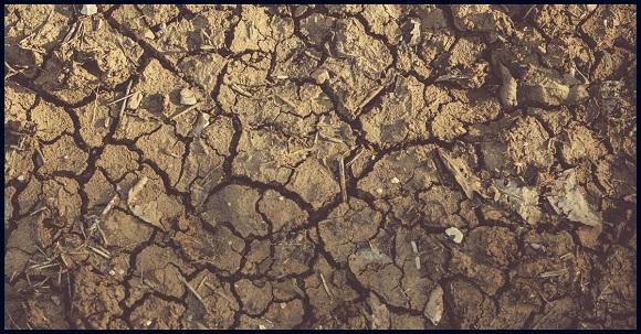 tanah kering akibat kemarau
