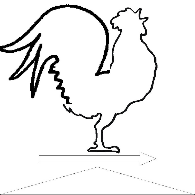 Line Drawing Rooster : Christina creating crowing and inevitably eating crow