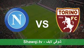 مشاهدة مباراة نابولي وتورينو اليوم بتاريخ 26-4-2021 في الدوري الايطالي