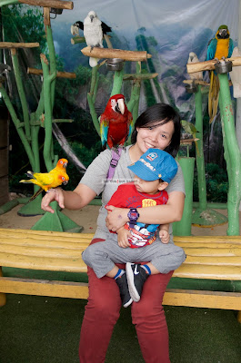 Ark Avilon Zoo - Picture taking with the birds