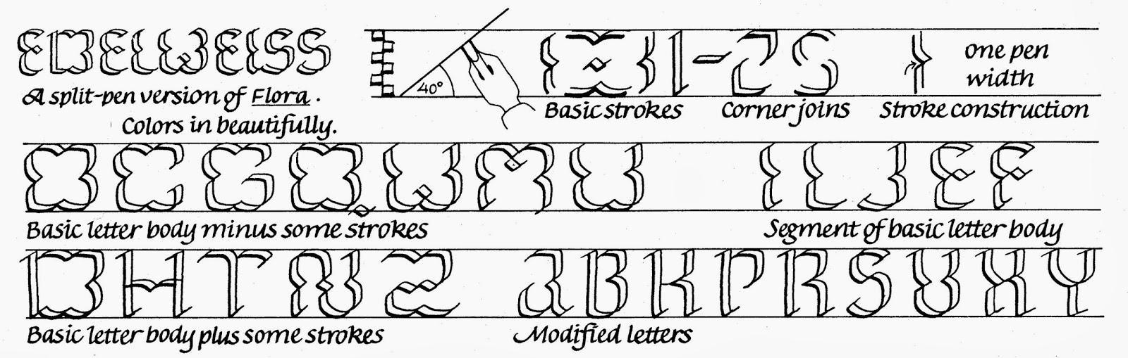 Margaret Shepherd: Calligraphy Blog: 290 Edelweiss