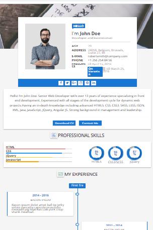 Sora CV Blogger Template