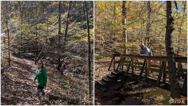 Stillhouse Hollow Falls trail, Mt Pleasant, TN