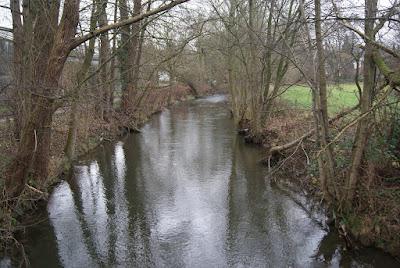 Ein Fluss, der sich zwischen einer Straße und einem Feld hindurch schlängelt, umringt von Bäumen