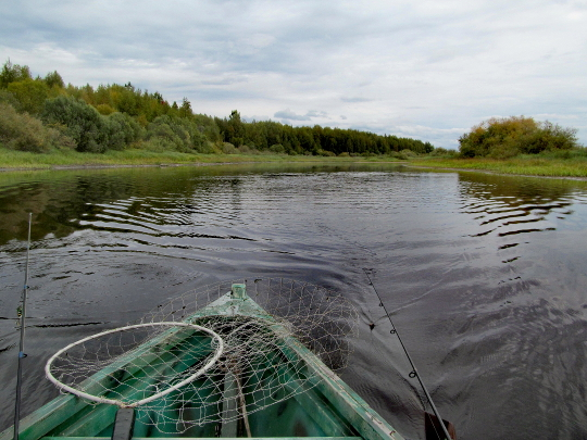 На лодке по обмелевшей реке