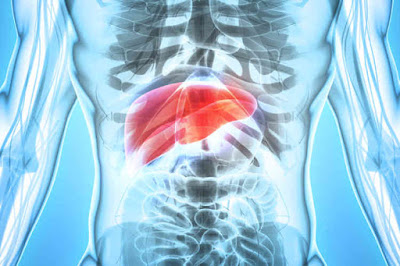Hepatitis sembuh dengan habatop dan pipeca