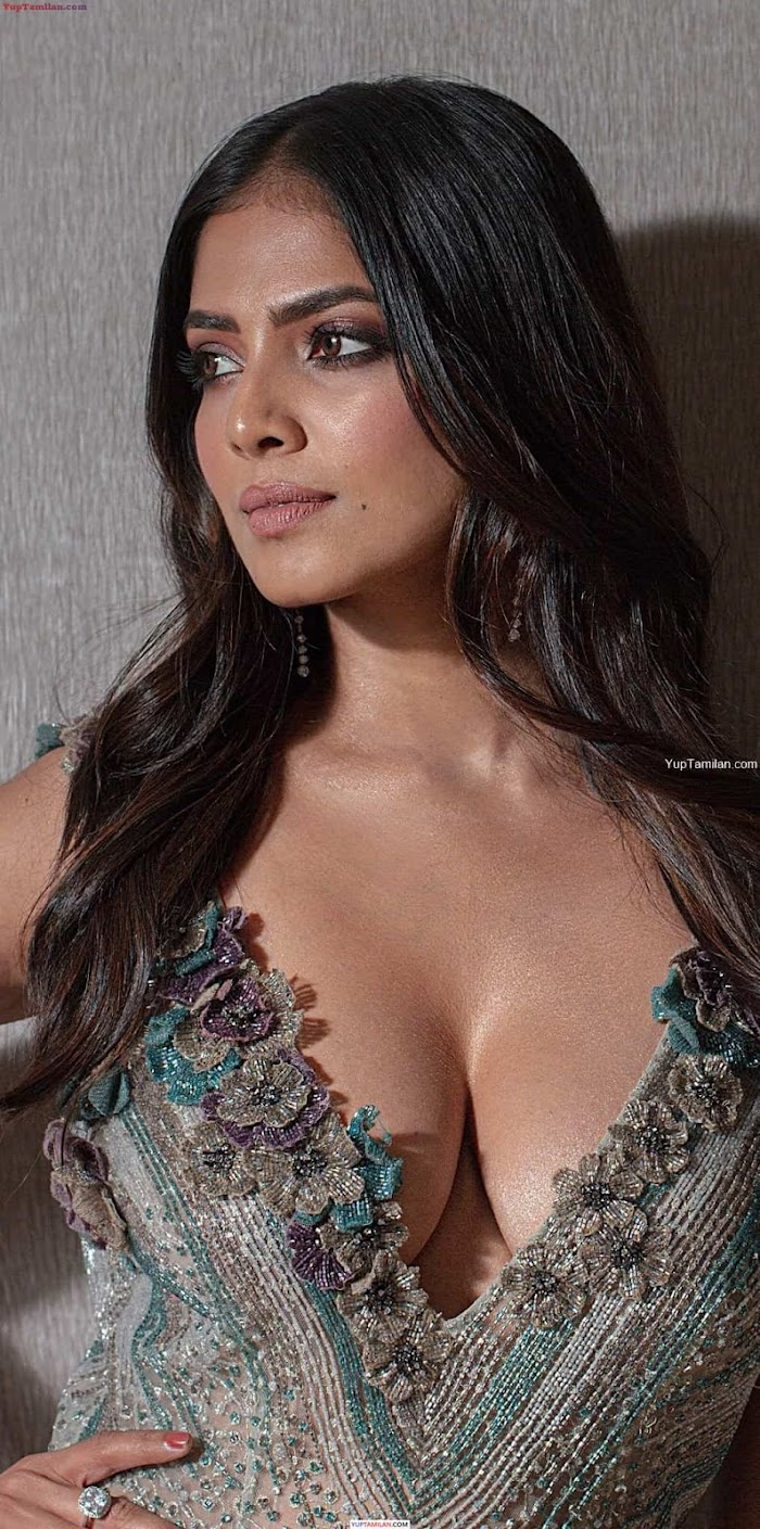 Most Sexiest Photos of Malavika Mohanan - Hot Navel Show & Cleavage Pictures