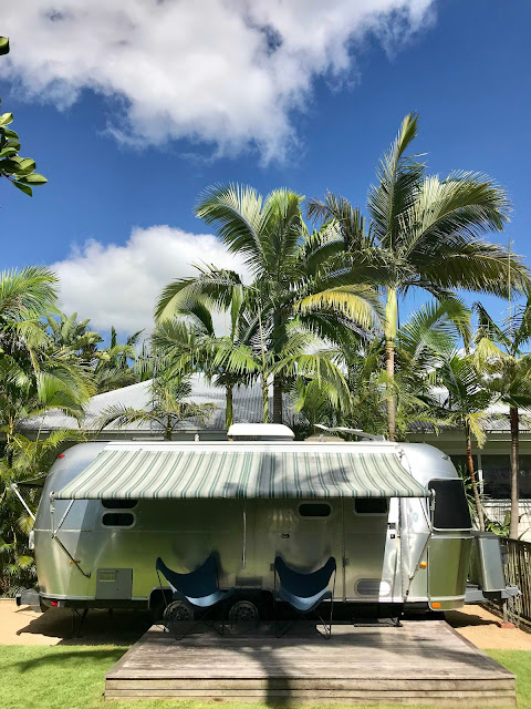 Two camping chairs in front of a silver Airstream Trailor with large palm trees in the background.