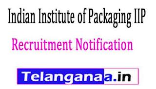 Indian Institute of Packaging IIP Recruitment Notification 2017