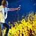 Pearl Jam volta ao Brasil e investe em restauração da Amazônia