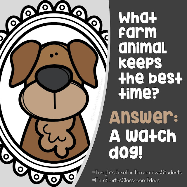 What farm animal keeps the best time? Answer: A watch dog! Follow my Pinterest Board - Jokes for Kids for more jokes for your students! #FernSmithsClassroomIdeas #TonightsJokeforTomorrowsStudents