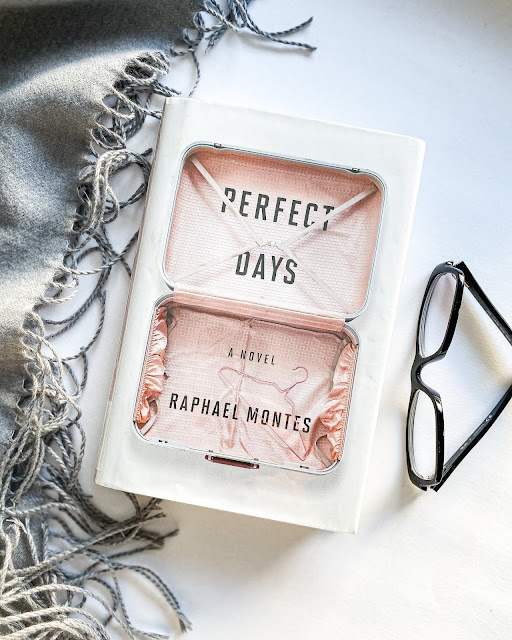 Perfect Days - Book Review - Incredible Opinions