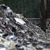 Ливан вывезет в Краснодарский край 5 млн тонн мусора