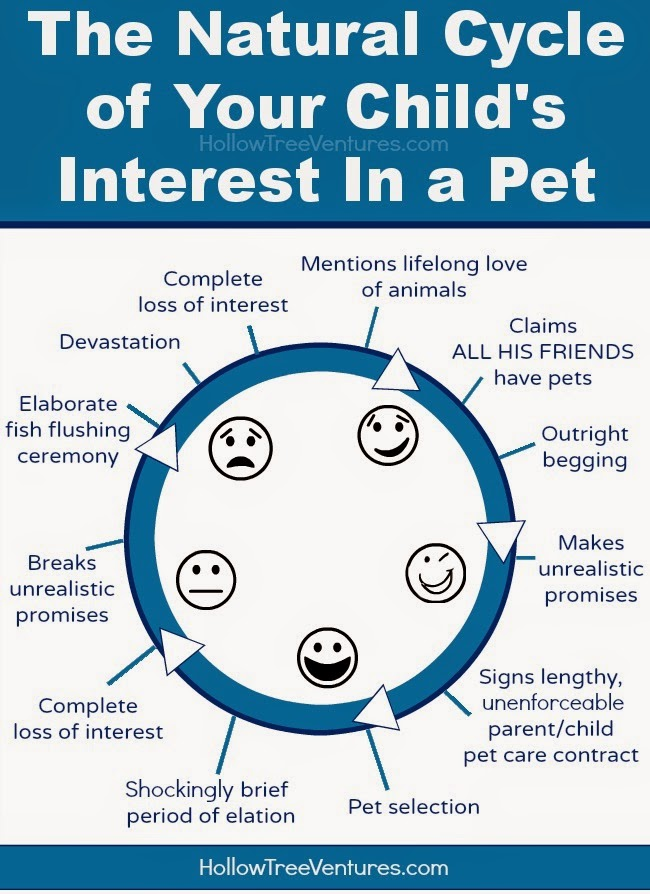 The Natural Cycle of Your Child's Interest In a Pet - funny graphic by Robyn Welling @RobynHTV