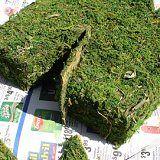 Make a Moss-covered Monogram for Spring!