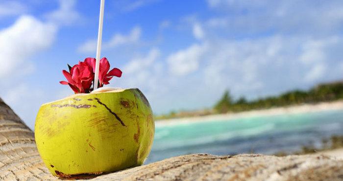 5 Manfaat Air Kelapa Terhadap Kesehatan Tubuh