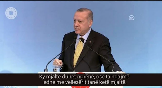 Erdogan considers the Albanians as brothers: We'll raise Albania after the earthquake