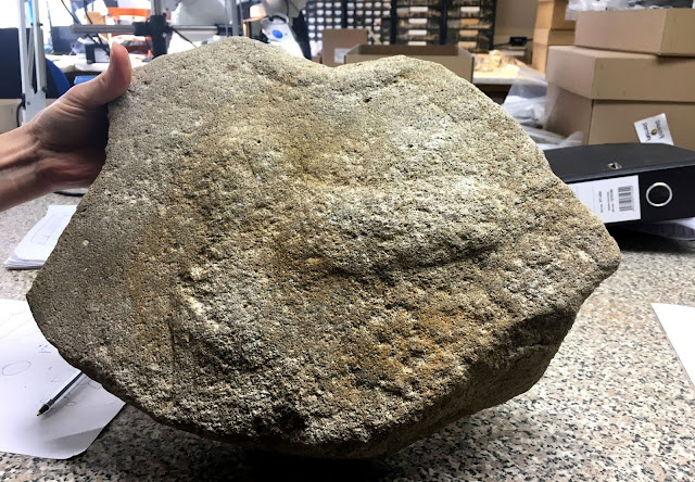 2,000-year-old millstone engraved with giant phallus found in Cambridgeshire