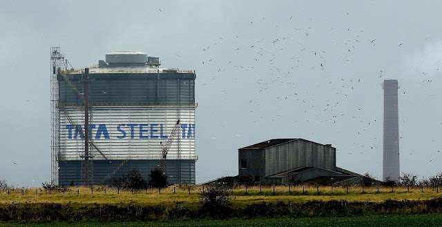 Image Attribute: Birds fly above part of the TATA Steel plant in Scunthorpe, northern England, in this file photograph dated October 15, 2014.       REUTERS/Phil Noble/files